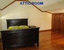 Kentwood attic