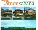 Amonsagan view