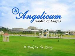 Angelicum Garden of Angels pic 1