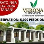 Verona Subdivision located in Balamban, Cebu. . .